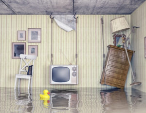 Water Damage Repair Worcester, Water Damage Worcester, Water Damage Cleanup Worcester